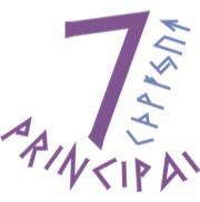 7 principų mokymai